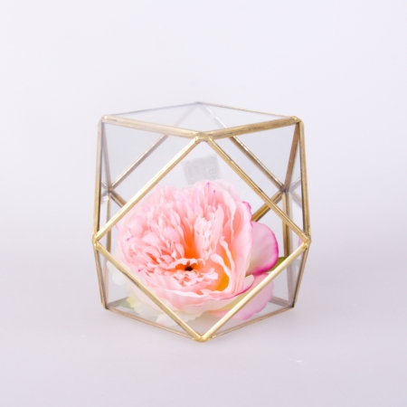 Terrarium Hexagon 26-2