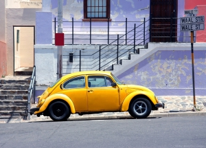 Fototapet FT 1417 Beetle